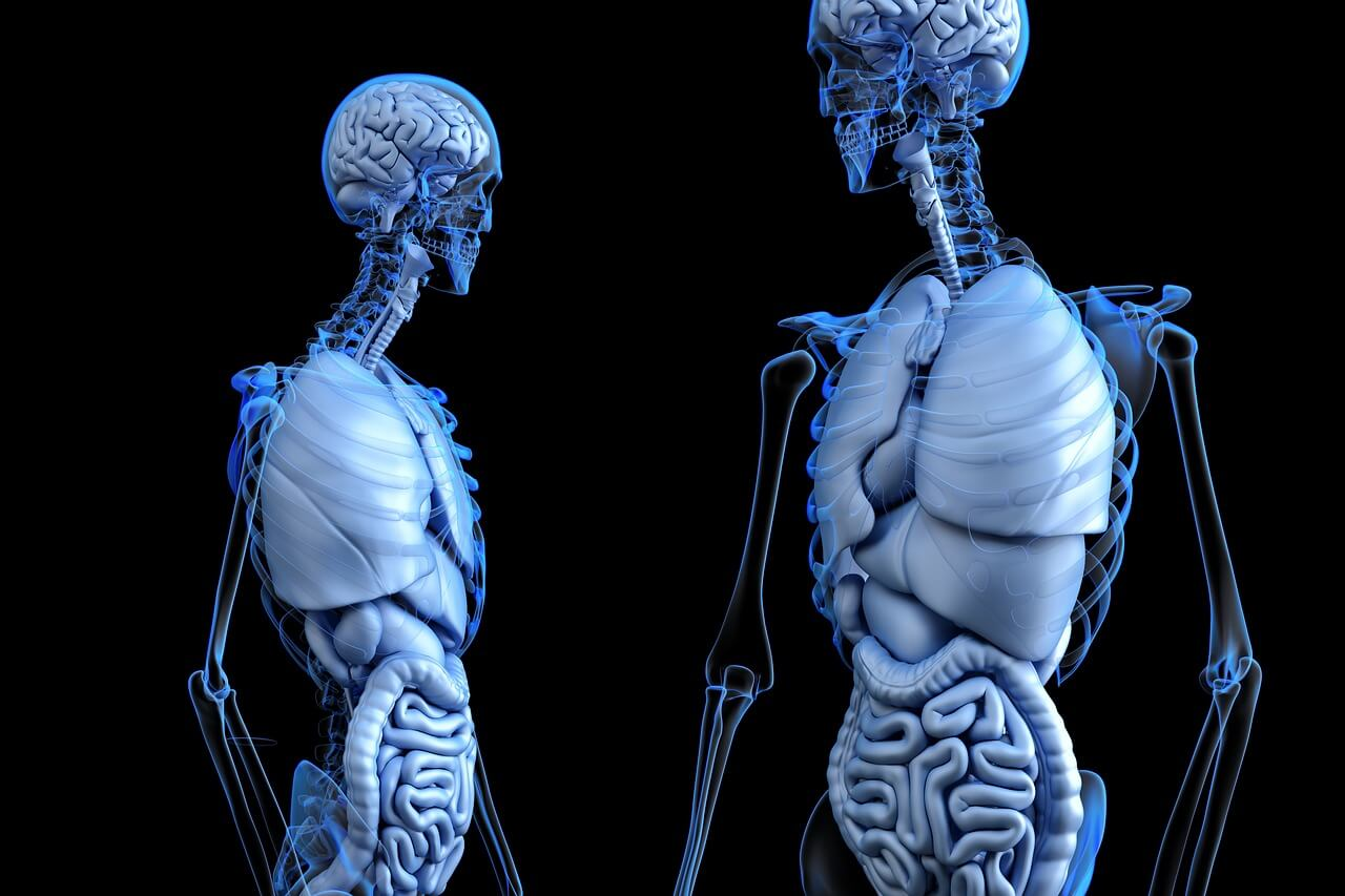 Vitamin and Mineral Supplements That Promote Bone Health